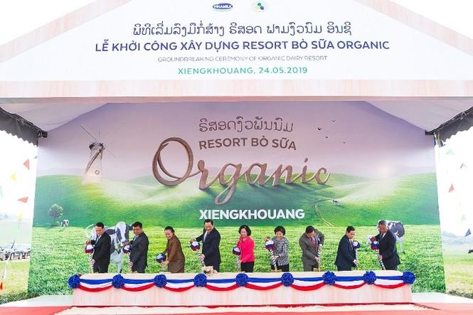 Vinamilk chinh phục top 50 công ty niêm yết tốt nhất Việt Nam - ảnh 1