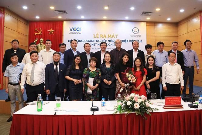 Bà Nguyễn Thị Diễm Hằng được bổ nhiệm phó chủ tịch VCAC - ảnh 3