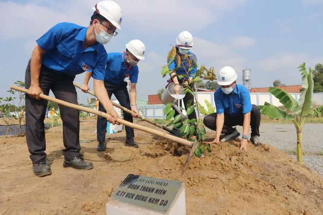 KĐN tiếp tục Chương trình trồng cây năm 2021 tại Bà Rịa - ảnh 1
