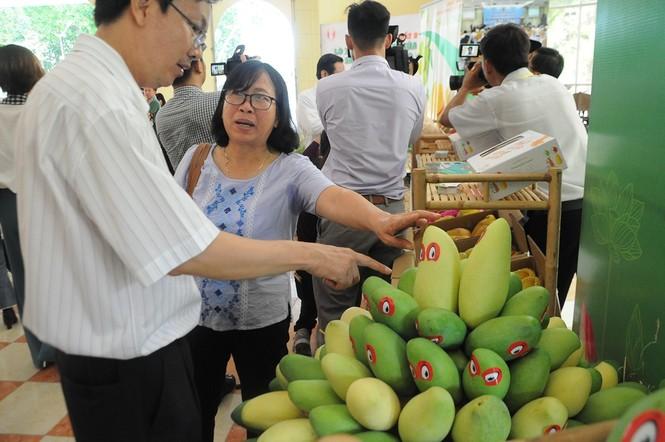 Trung Quốc tạm dừng nhập khẩu xoài 'mạo danh' của Việt Nam - ảnh 1