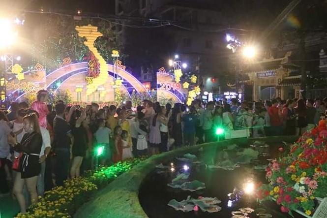 Hàng chục nghìn người thưởng ngoạn đường hoa Cần Thơ - ảnh 3