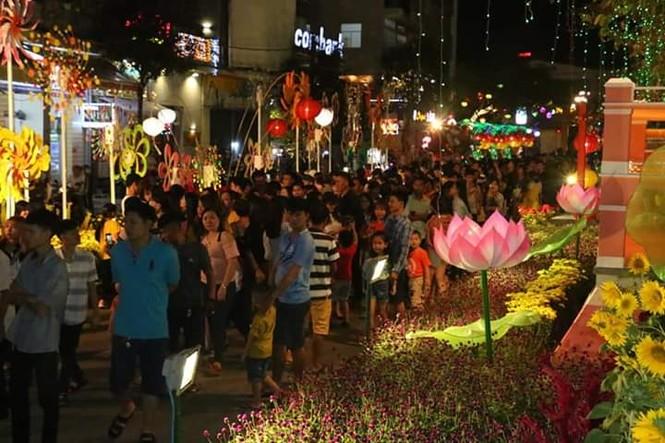 Hàng chục nghìn người thưởng ngoạn đường hoa Cần Thơ - ảnh 6