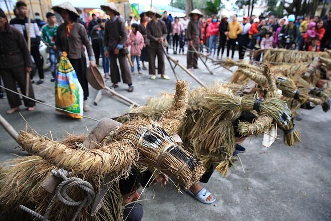 Độc đáo lễ hội trâu rơm bò rạ ngày xuân - ảnh 2