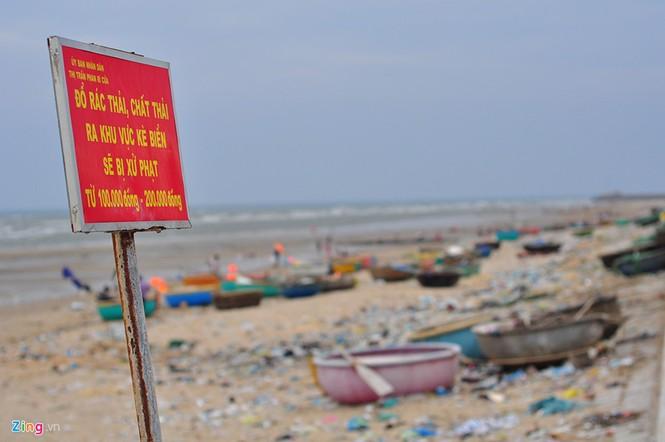 Bờ biển đẹp trở thành bãi chứa hàng tấn rác thải - ảnh 14