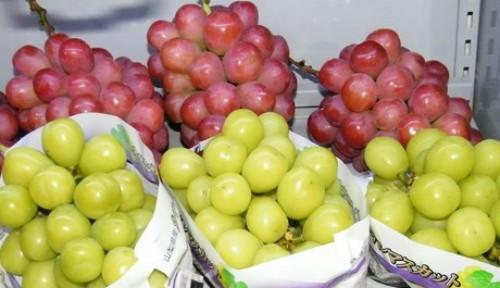 Những trái cây Nhật có giá gấp chục lần hàng Việt - ảnh 4