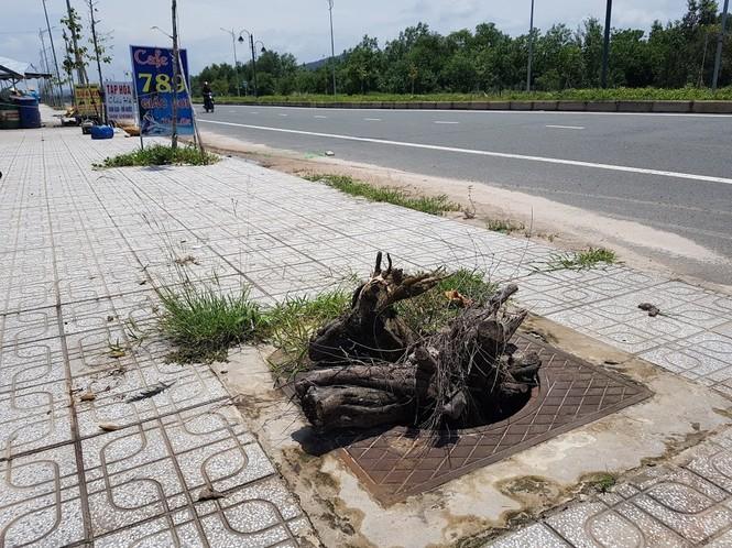 Hàng trăm nắp cống trên tuyến đường đẹp nhất đảo Phú Quốc bị trộm lấy cắp - ảnh 3