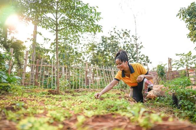 Sao Việt 24H: Đông Nhi vào bếp làm bánh tặng fan, H'Hen Niê khoe vườn rau gia đình xanh má - ảnh 3