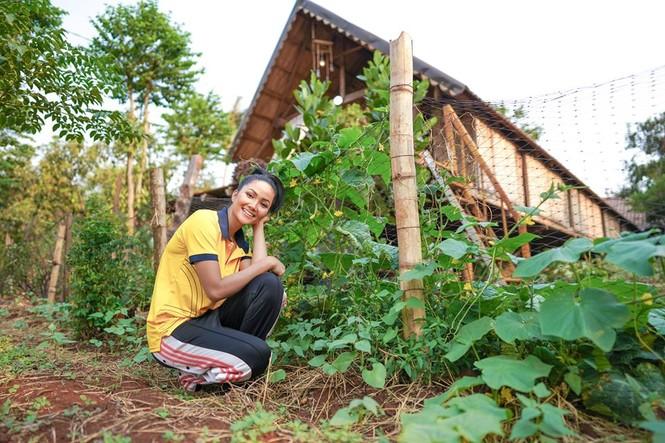 Sao Việt 24H: Đông Nhi vào bếp làm bánh tặng fan, H'Hen Niê khoe vườn rau gia đình xanh má - ảnh 4