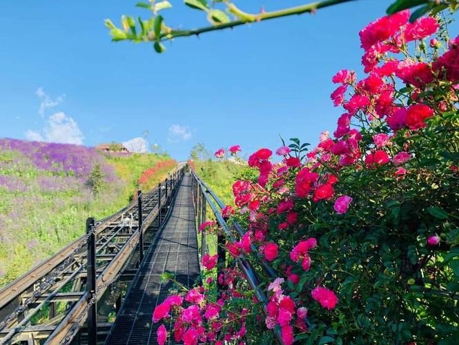 """Ngất ngây với hành trình """"săn mây"""" vào mùa đẹp nhất trong năm tại Sa Pa  - ảnh 7"""