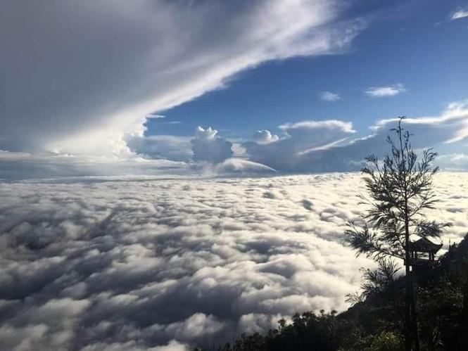 """Ngất ngây với hành trình """"săn mây"""" vào mùa đẹp nhất trong năm tại Sa Pa  - ảnh 2"""