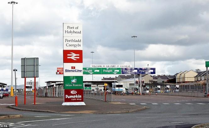 Săn tìm thủ phạm của chiếc xe tải chở 39 xác chết lọt vào nước Anh - ảnh 2