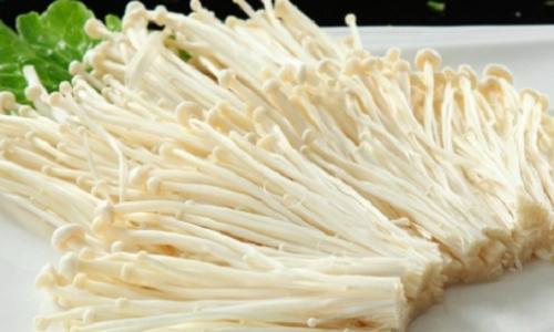 Những loại nấm tốt như 'thần dược', vừa chống ung thư vừa chữa bệnh - ảnh 2