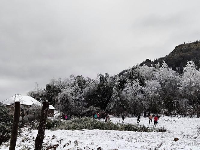 Băng tuyết phủ trắng Y Tý và đèo Ô Quy Hồ - ảnh 12