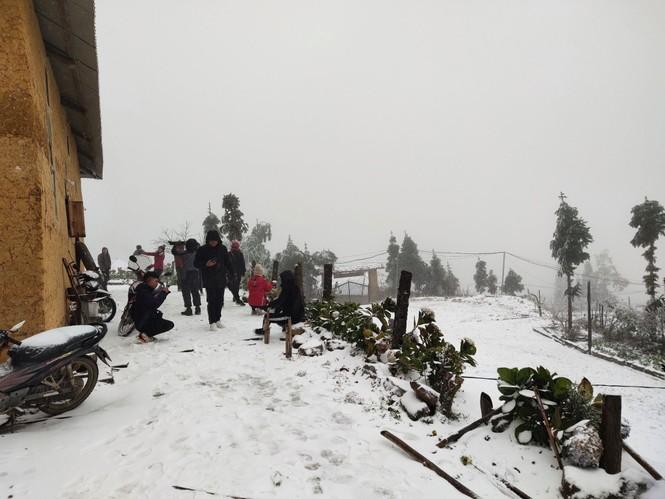 Băng tuyết phủ trắng Y Tý và đèo Ô Quy Hồ - ảnh 13