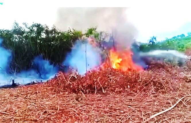 Cháy dữ dội trong khuôn viên trường bắn quân sự - ảnh 1