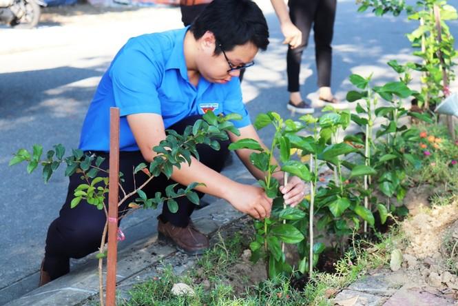Đoàn viên thanh niên cụm Bắc Trung Bộ hưởng ứng 'Chủ Nhật xanh' tại Huế - ảnh 6