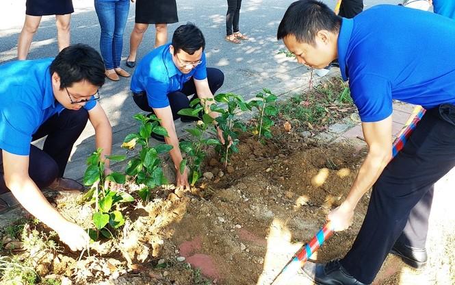 Đoàn viên thanh niên cụm Bắc Trung Bộ hưởng ứng 'Chủ Nhật xanh' tại Huế - ảnh 7