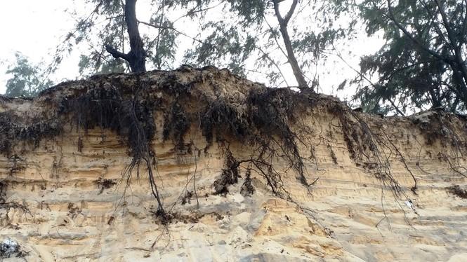 Bờ biển Phú Thuận, TT-Huế, bị xâm thực nghiêm trọng phải di dời dân - ảnh 1