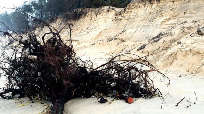 Bờ biển Phú Thuận, TT-Huế, bị xâm thực nghiêm trọng phải di dời dân - ảnh 8