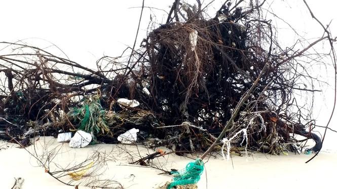Bờ biển Phú Thuận, TT-Huế, bị xâm thực nghiêm trọng phải di dời dân - ảnh 9