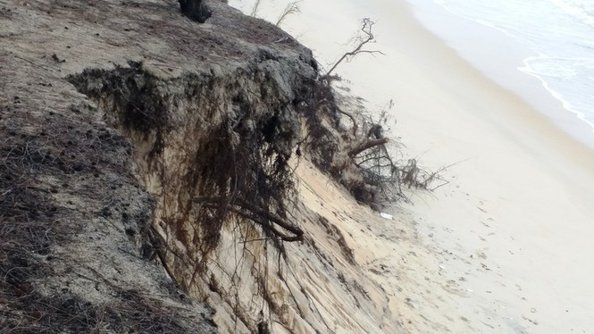 Bờ biển Phú Thuận, TT-Huế, bị xâm thực nghiêm trọng phải di dời dân - ảnh 11