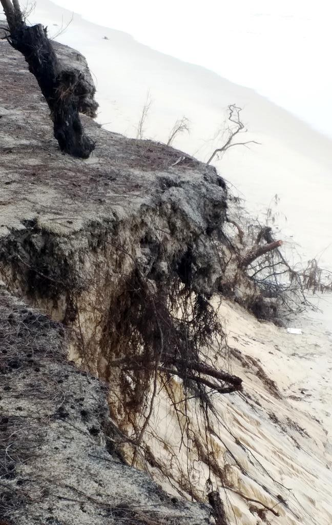 Bờ biển Phú Thuận, TT-Huế, bị xâm thực nghiêm trọng phải di dời dân - ảnh 10