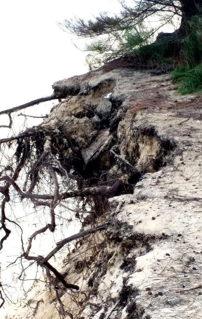 Bờ biển Phú Thuận, TT-Huế, bị xâm thực nghiêm trọng phải di dời dân - ảnh 12