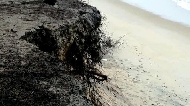 Bờ biển Phú Thuận, TT-Huế, bị xâm thực nghiêm trọng phải di dời dân - ảnh 13