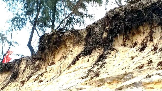 Bờ biển Phú Thuận, TT-Huế, bị xâm thực nghiêm trọng phải di dời dân - ảnh 3