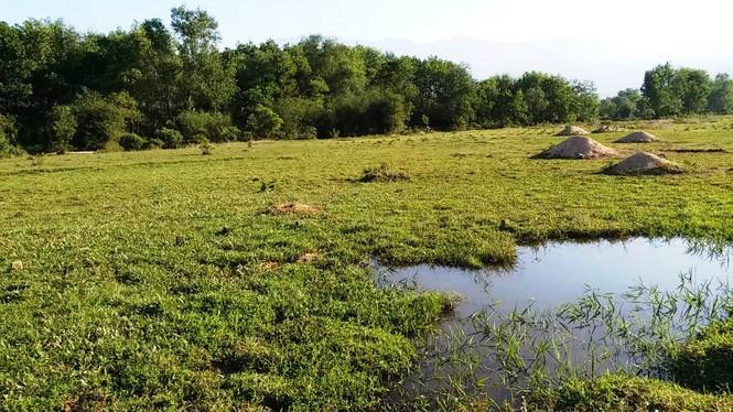 Nghĩa trang Nhân dân Chân Mây tỉnh Thừa Thiên Huế giữa sình lầy - ảnh 5