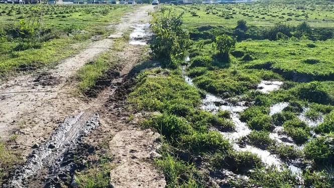 Nghĩa trang Nhân dân Chân Mây tỉnh Thừa Thiên Huế giữa sình lầy - ảnh 7