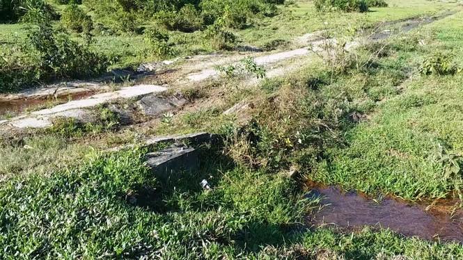 Nghĩa trang Nhân dân Chân Mây tỉnh Thừa Thiên Huế giữa sình lầy - ảnh 8