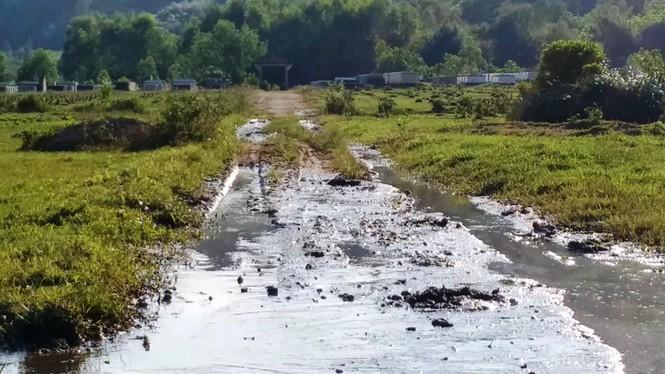 Nghĩa trang Nhân dân Chân Mây tỉnh Thừa Thiên Huế giữa sình lầy - ảnh 9