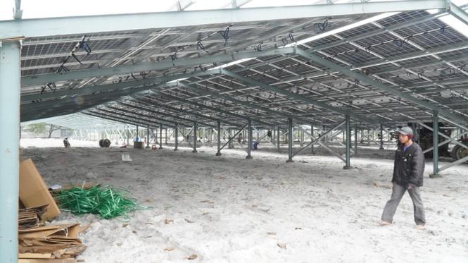 Rầm rộ làm trang trại 'điện mặt trời' tại TT-Huế:  'Áp mái' lên hàng loạt nhà... không mái - ảnh 2