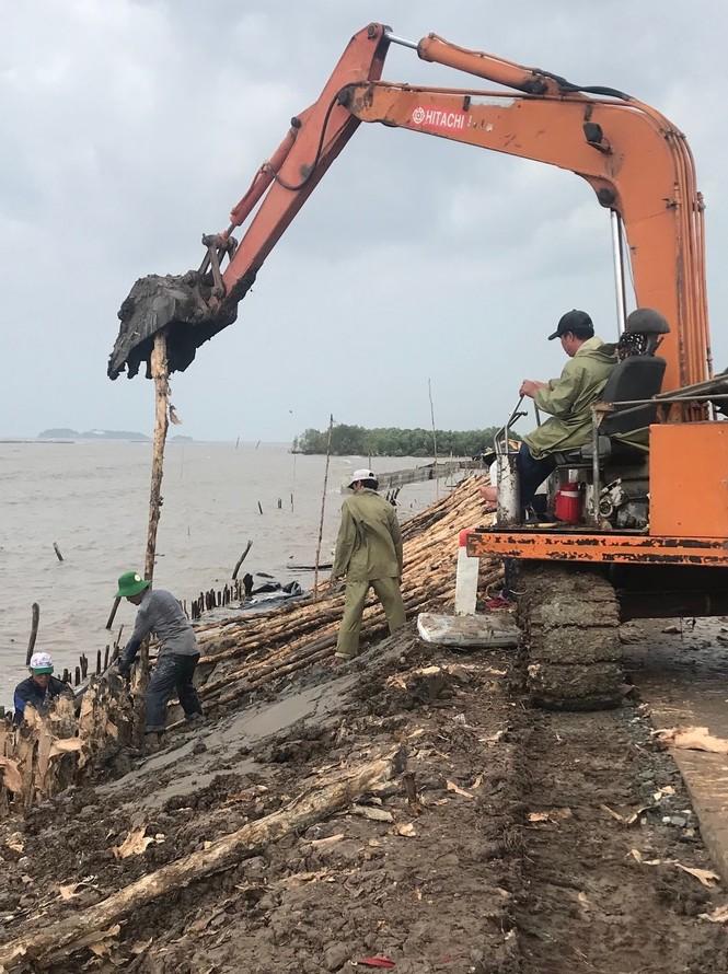 Hàng chục ngàn hộ dân nơm nớp lo vỡ đê, Cà Mau cần ban bố tình trạng khẩn cấp - ảnh 5