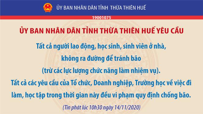 """Thừa Thiên - Huế: Người dân thức trắng, """"cụ"""" xà cừ ngã quỵ trước sự tấn công của bão số 13 - ảnh 1"""