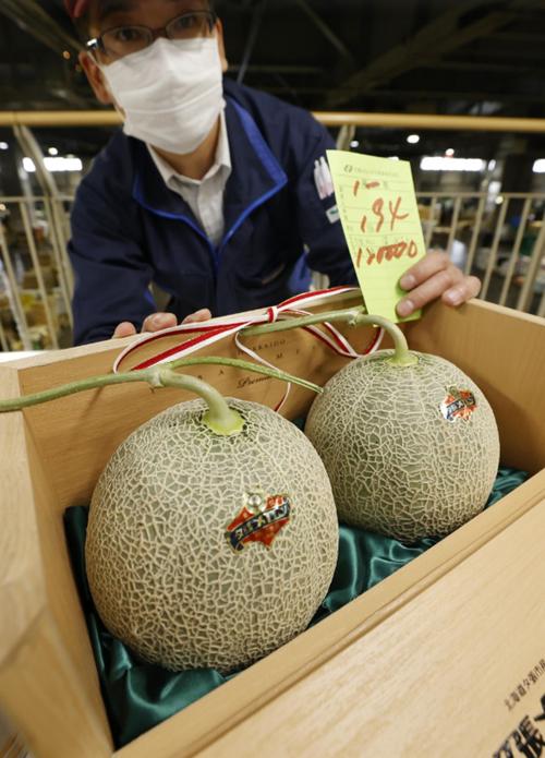 """Dưa hấu xịn xò ở Nhật giảm giá mạnh do đại dịch, """"chỉ còn"""" gần 50 triệu đồng/quả thôi - ảnh 3"""