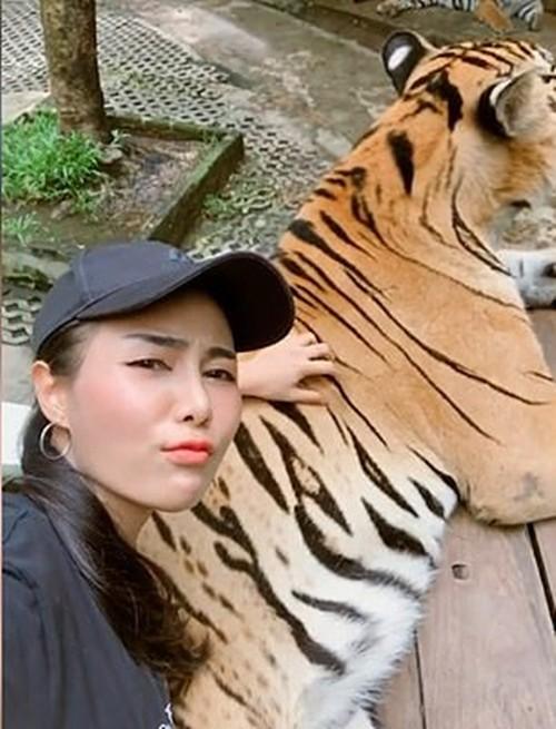 """Khách tham quan ở Thái chụp ảnh """"nhạy cảm"""" với hổ trong sở thú, bị chỉ trích gay gắt  - ảnh 2"""