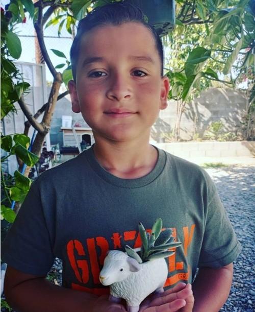 Từ cảnh vô gia cư, cậu bé 8 tuổi này đã kiếm được đủ tiền mua nhà chỉ trong chưa đầy 1 năm - ảnh 2