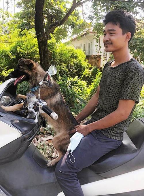 Chú chó đi lạc có cách cực thông minh để chủ tìm thấy mình, chủ cũng không tưởng tượng ra - ảnh 3