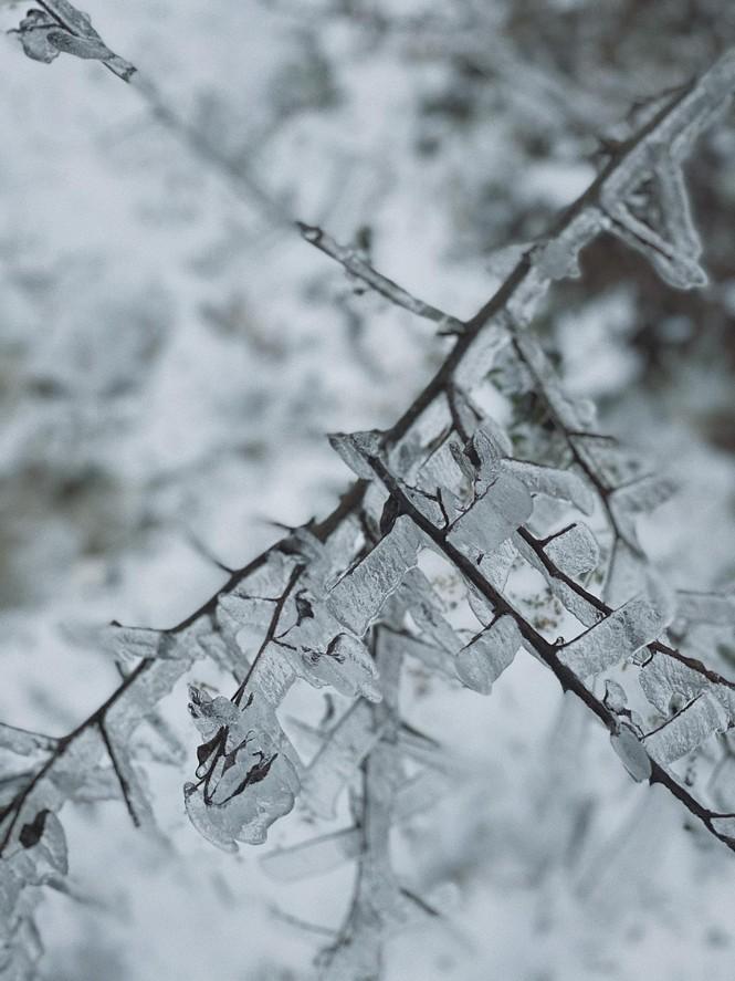 Ngắm Y Tý, Sa Pa những ngày tuyết mùa đông: vẻ đẹp như lạc vào thế giới cổ tích của