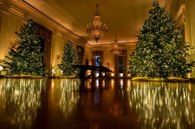 Nhà Trắng trang hoàng lộng lẫy đón Giáng sinh 2020  - ảnh 1