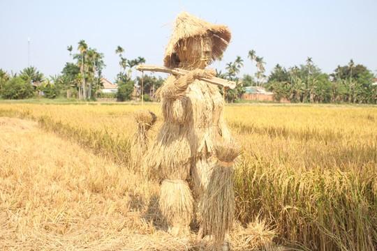 Sôi động tuổi thơ với lễ hội ngày mùa trên đồng ruộng  - ảnh 16