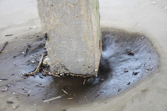 Nước biển nổi bọt đen như cà phê đã lan rộng ra vùng biển Khu kinh tế Dung Quất - ảnh 5
