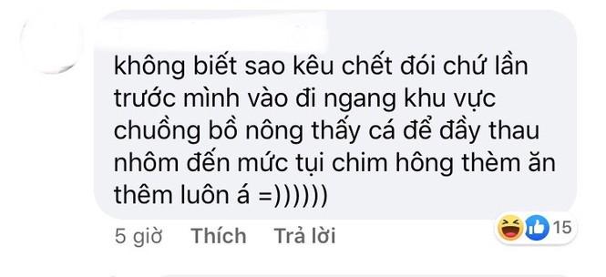 """Thảo Cầm Viên Sài Gòn lên tiếng sau khi bị """"tố"""" ngược đãi động vật  - ảnh 6"""