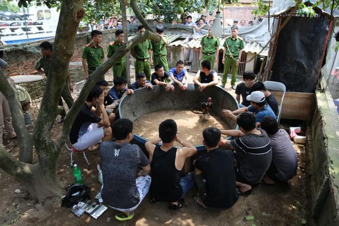 Liên tục bắt các đối tượng đá gà ăn tiền tại Bắc Ninh, Bắc Giang - ảnh 1