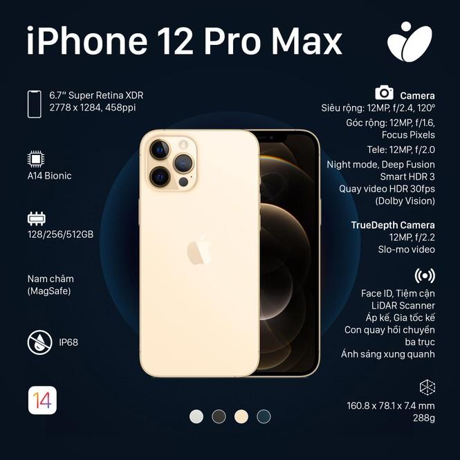 Phiên bản iPhone 12 Pro, iPhone 12 Pro Max: Màn hình lớn viền mỏng, có thêm 2 màu sắc mới - ảnh 3