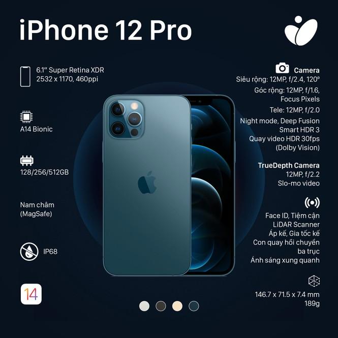 Phiên bản iPhone 12 Pro, iPhone 12 Pro Max: Màn hình lớn viền mỏng, có thêm 2 màu sắc mới - ảnh 2