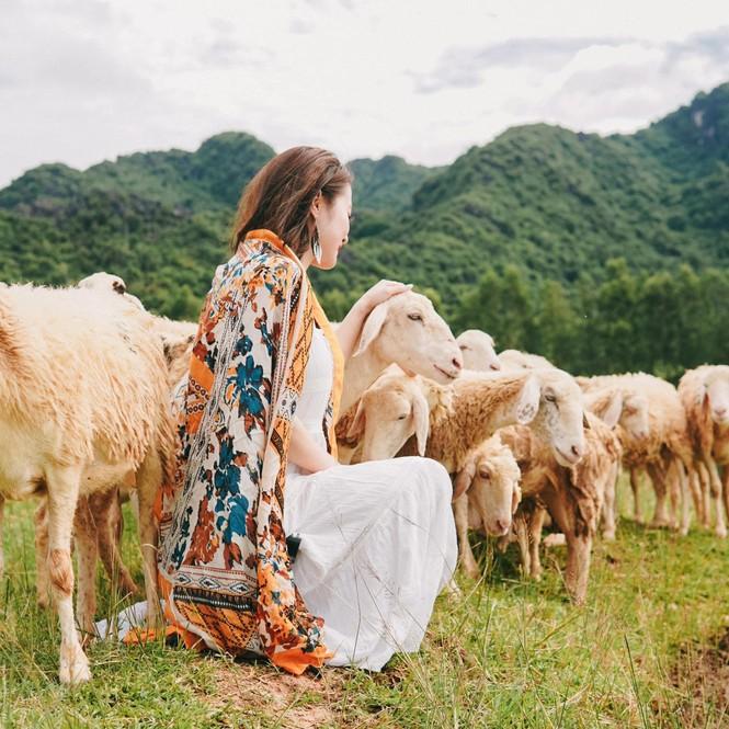 Hang Múa, đồng cừu Gia Viễn (Ninh Bình) lọt top điểm