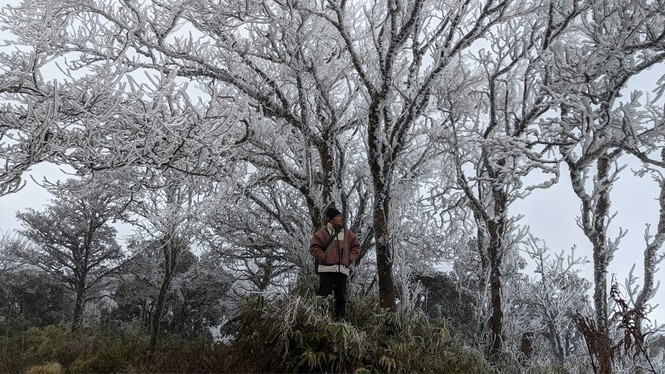 Băng giá phủ trắng một số nơi ở vùng núi phía Bắc, team săn tuyết lên đường ngay thôi! - ảnh 8